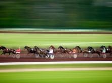 Paardenrenbaan Vichy